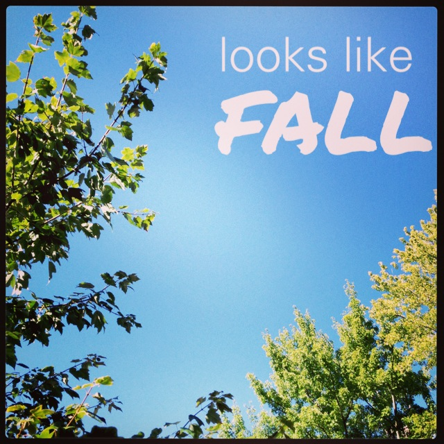 fall in the air