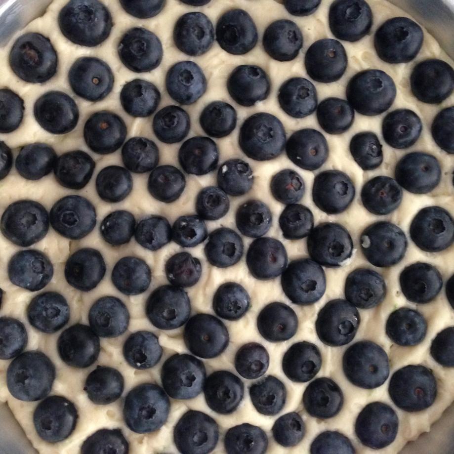 blueberry swirls.
