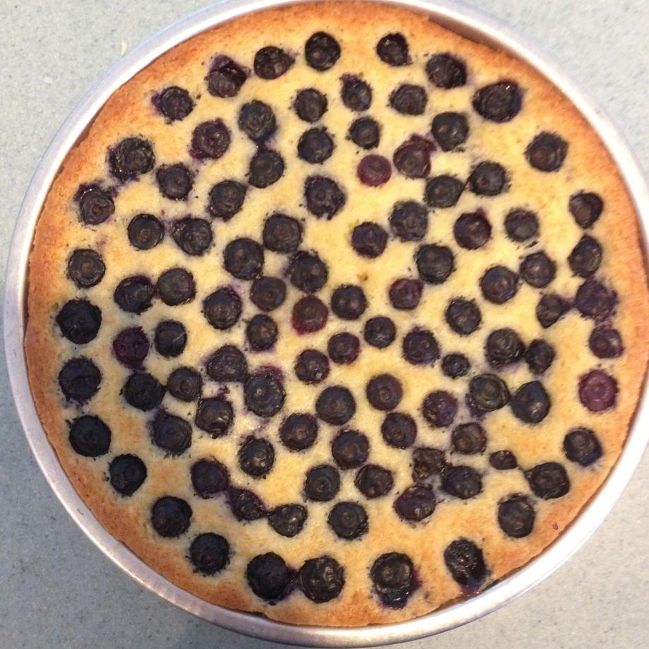 blueberry summer cake.